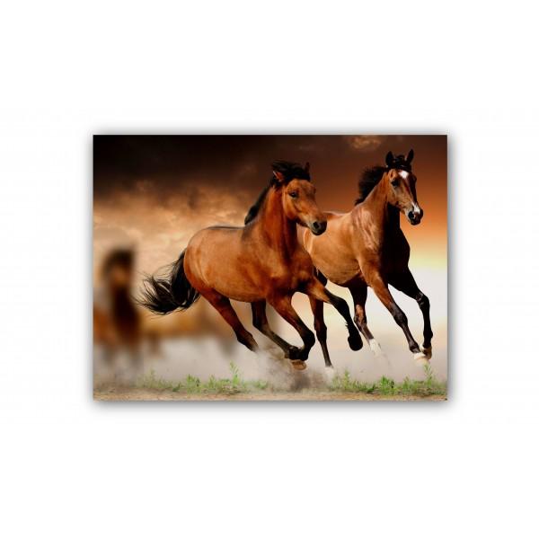 Canvas paard 1