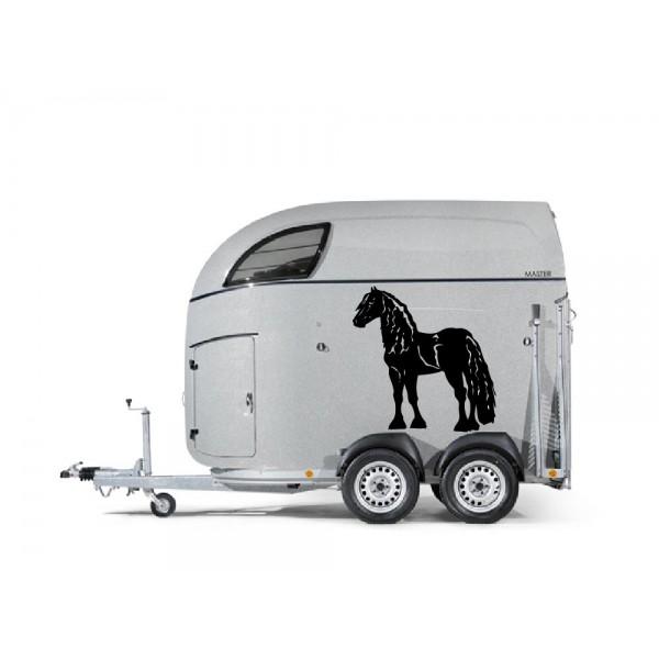 Fries paard 15