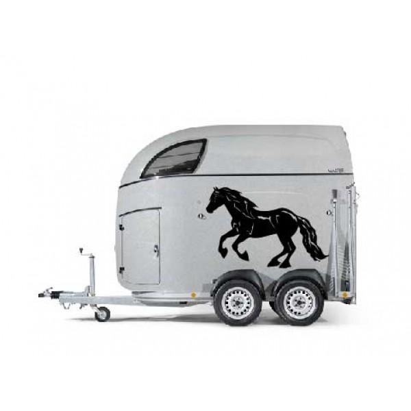 Fries paard 17