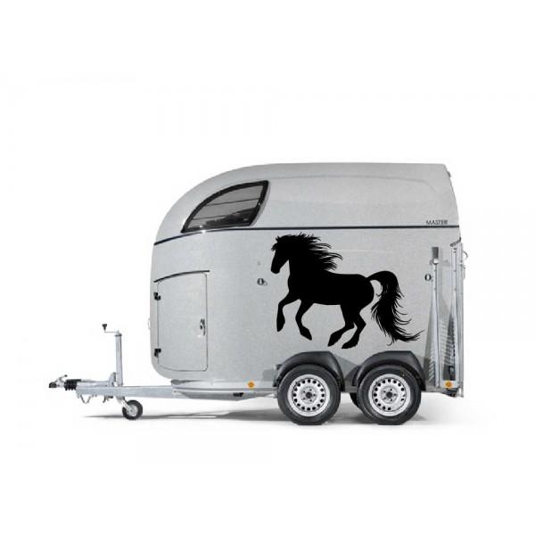Fries paard 37