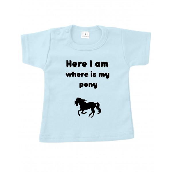 Here i am where is my pony